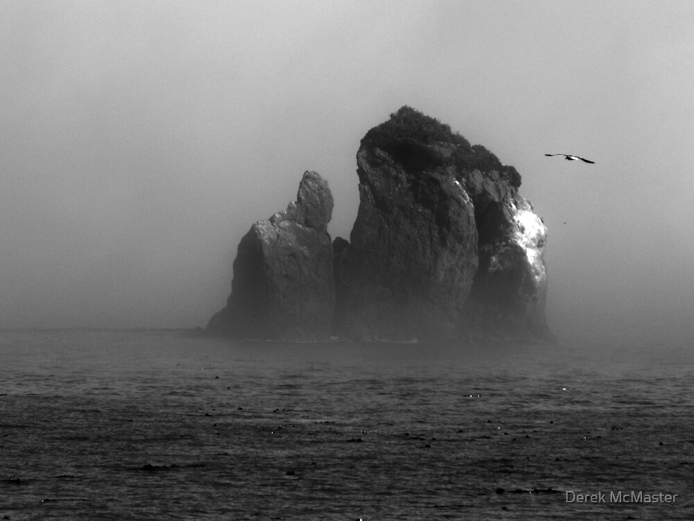 Coastal Rock in Fog by Derek McMaster