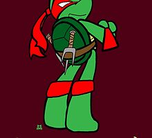 Teenage Mutant Ninja Turtles- Raphael by LillyKitten