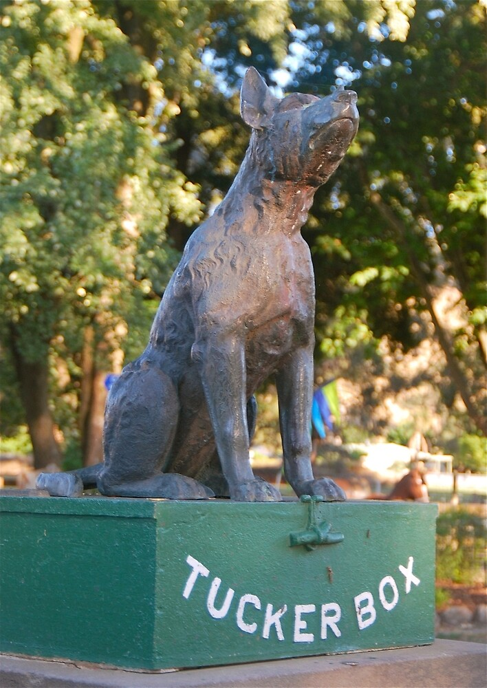 The Dog Sits on the Tuckerbox by Penny Smith