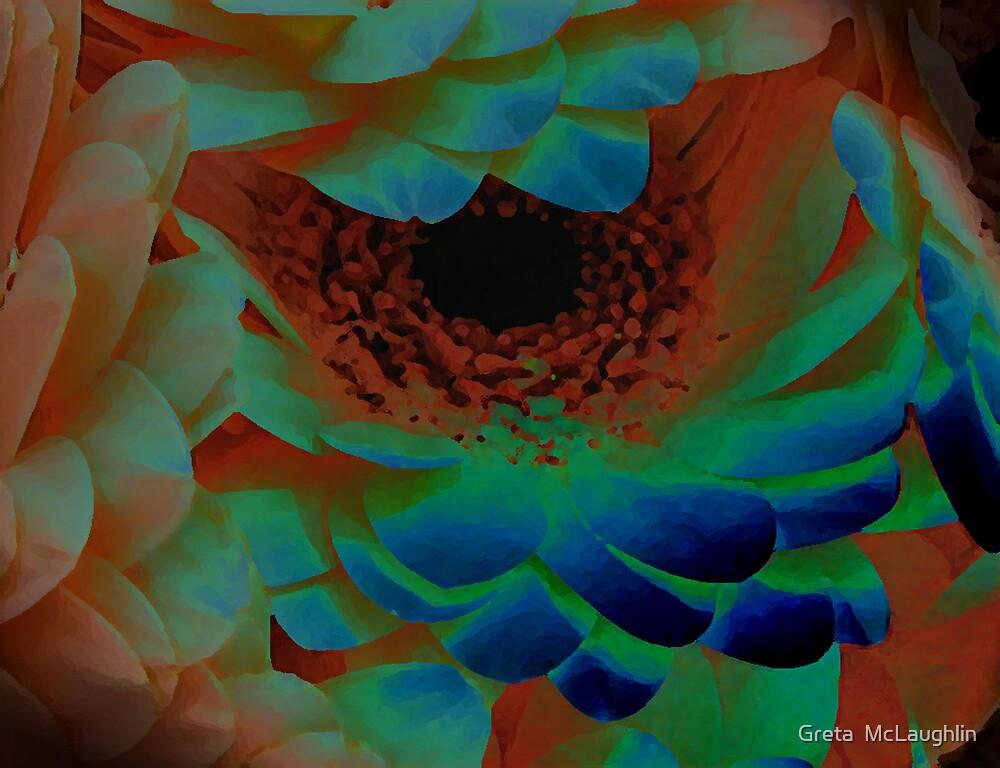 Shy III by Greta  McLaughlin