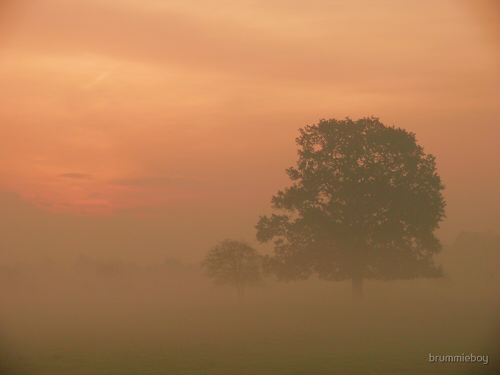 Misty morning over the fields by brummieboy