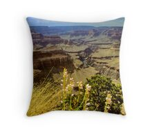 Canyon Space Throw Pillow