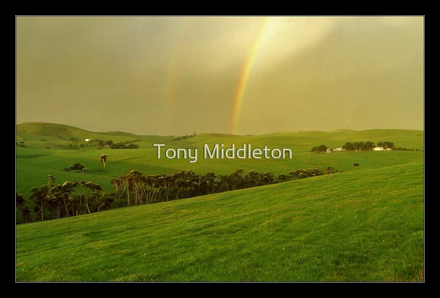 under the rainbow... by Tony Middleton