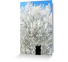 The Snow Tree #2 Greeting Card