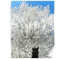 The Snow Tree #2 Poster