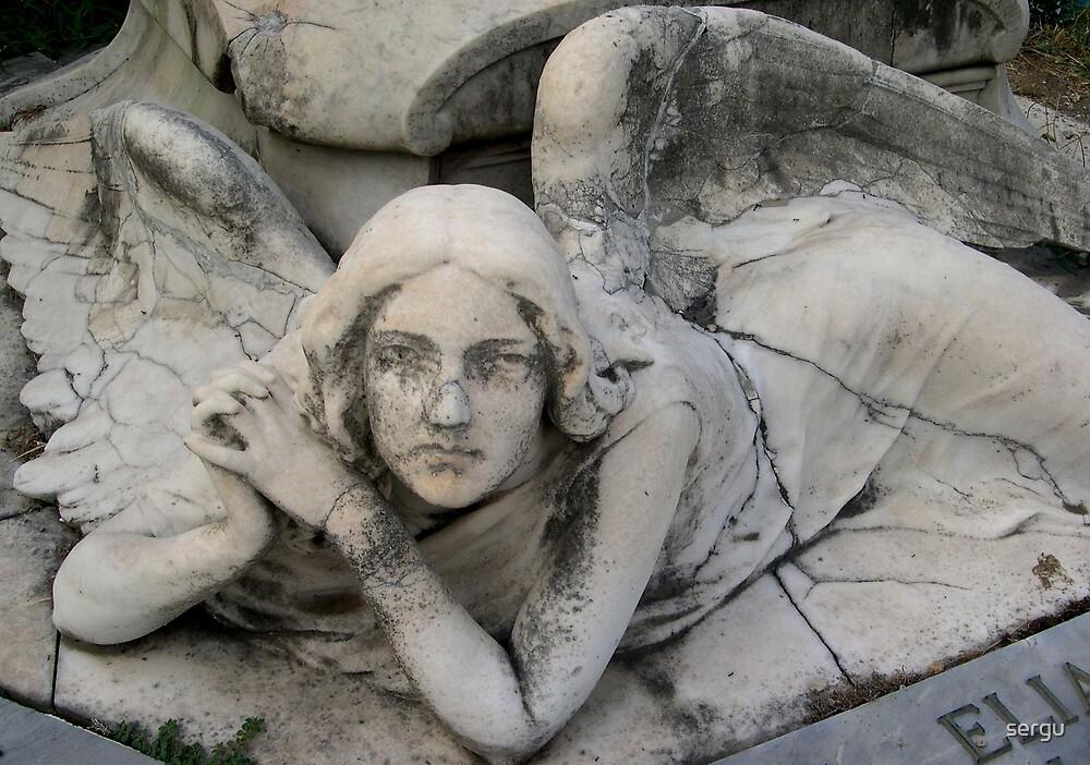 angelo  0 by sergu