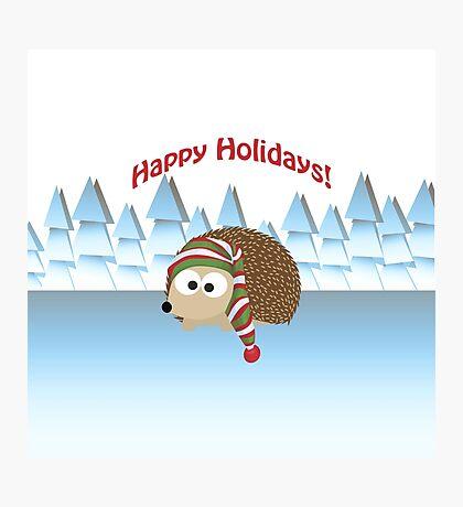 Happy Holidays! Winter Hedgehog Photographic Print