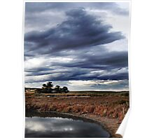 Dramatic Wetlands Poster