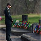 Remembering The Fallen by Jamie Cameron