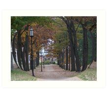 October in the Park Art Print