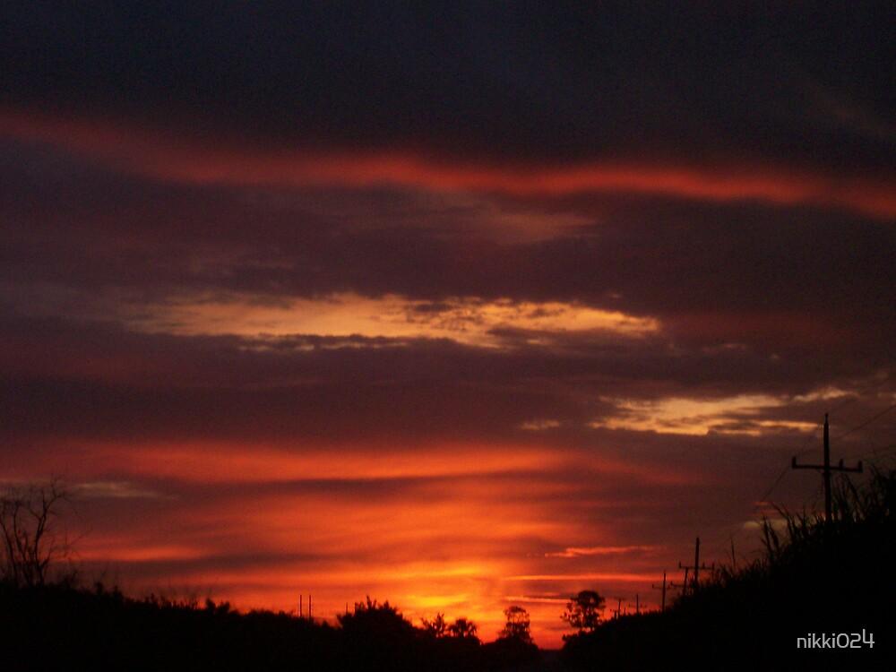 SOUTH FLORIDA SUNRISE by nikki024