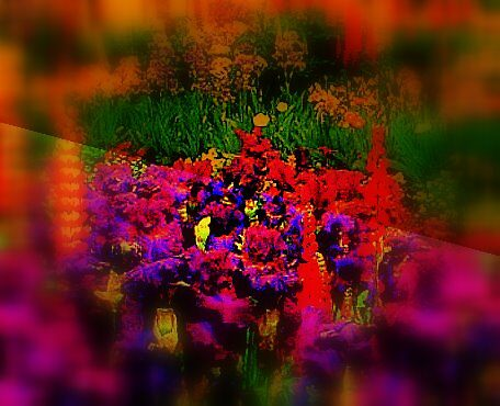 Spring flowers  by Jenny Padley