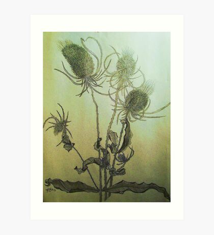 Thistle in Autumn Art Print