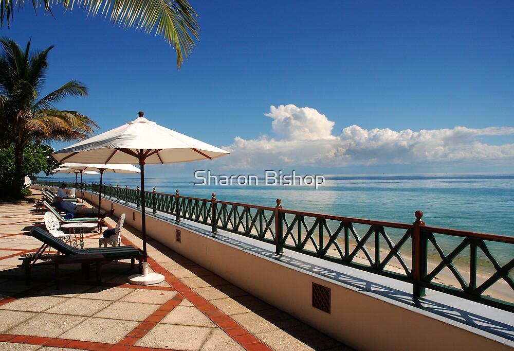 Paradise found by Sharon Bishop