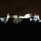 Stirling Castle At Night  by Alan Findlater
