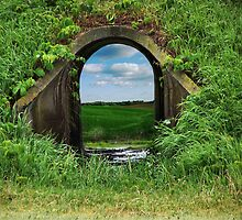 Portal by susannahg