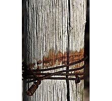 Weathered post Photographic Print