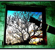 window to the darkside by pippa