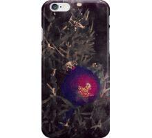 Ornamented iPhone Case/Skin