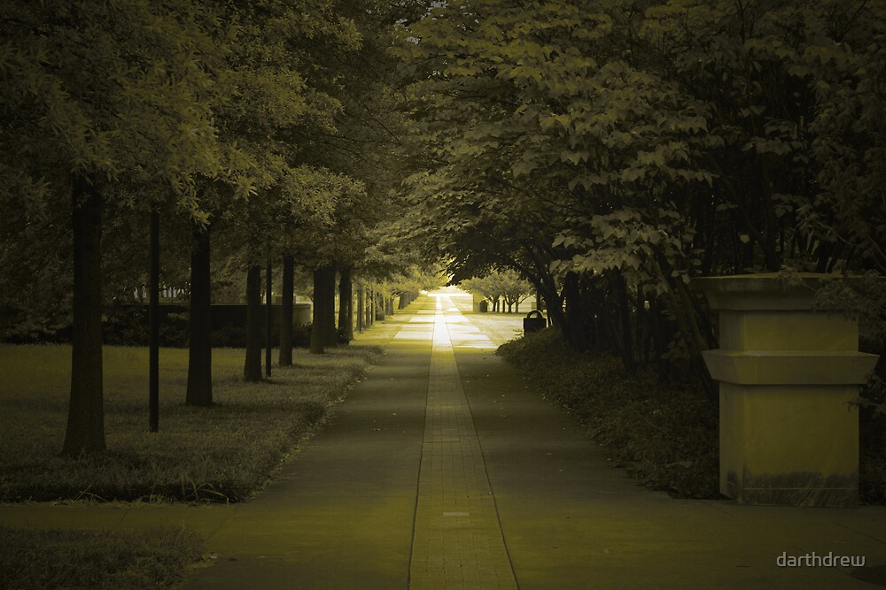 The Path by darthdrew