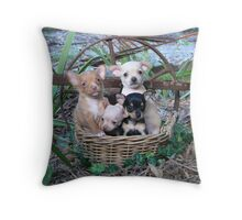 What are we doing here? Throw Pillow