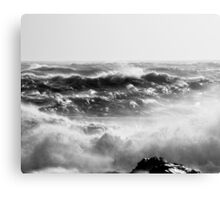Deadly/Beautiful Canvas Print