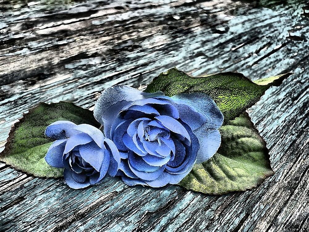 The Flowers by brandie
