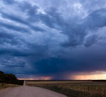 Road to Rain by Matt Harvey