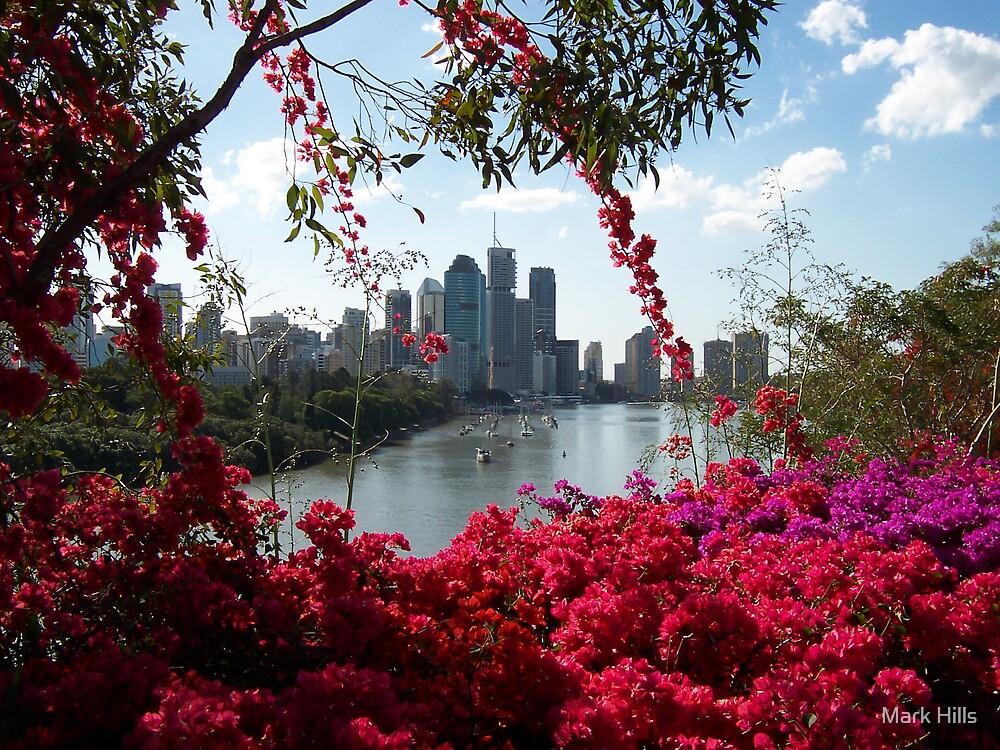 Brisbane in Bloom by Mark Hills