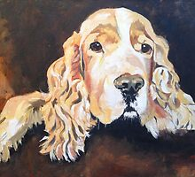 Cocker Spaniel by Emily King