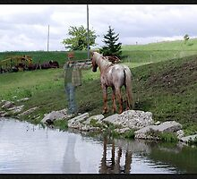 Farm Pond by jewelskings
