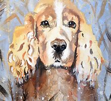 Cocker Spaniel in meadow by Emily King