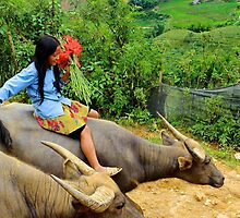 Joyful Children VI - Sa Pa, Vietnam. by Tiffany Lenoir