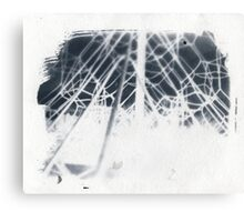 cyanotype web Canvas Print