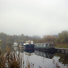 Forth and Clyde Canal by Lynn Bolt