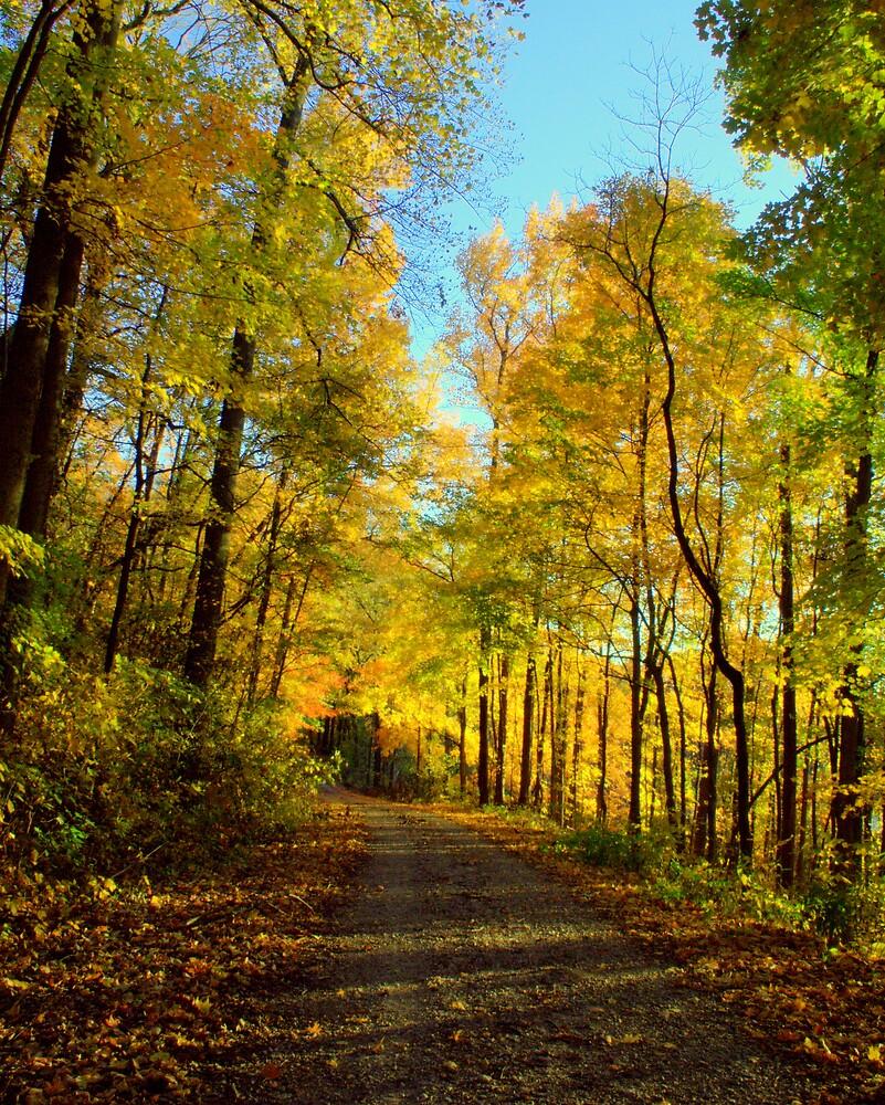 Down Autumn's Road 2 by Gretchen  Mueller Steele
