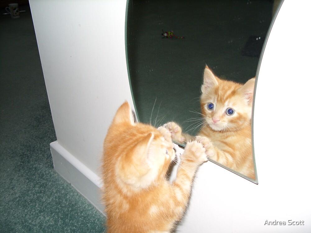 mirror image by Andrea Scott