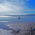 My Beautiful Bay Shore (best viewed large) by Martha Medford