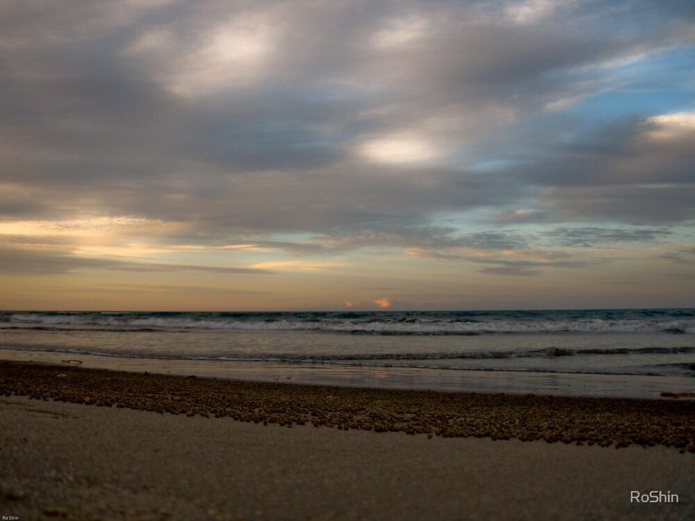Tidal Sunset by RoShin