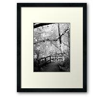 Bellingham, film infrared medium format print Framed Print