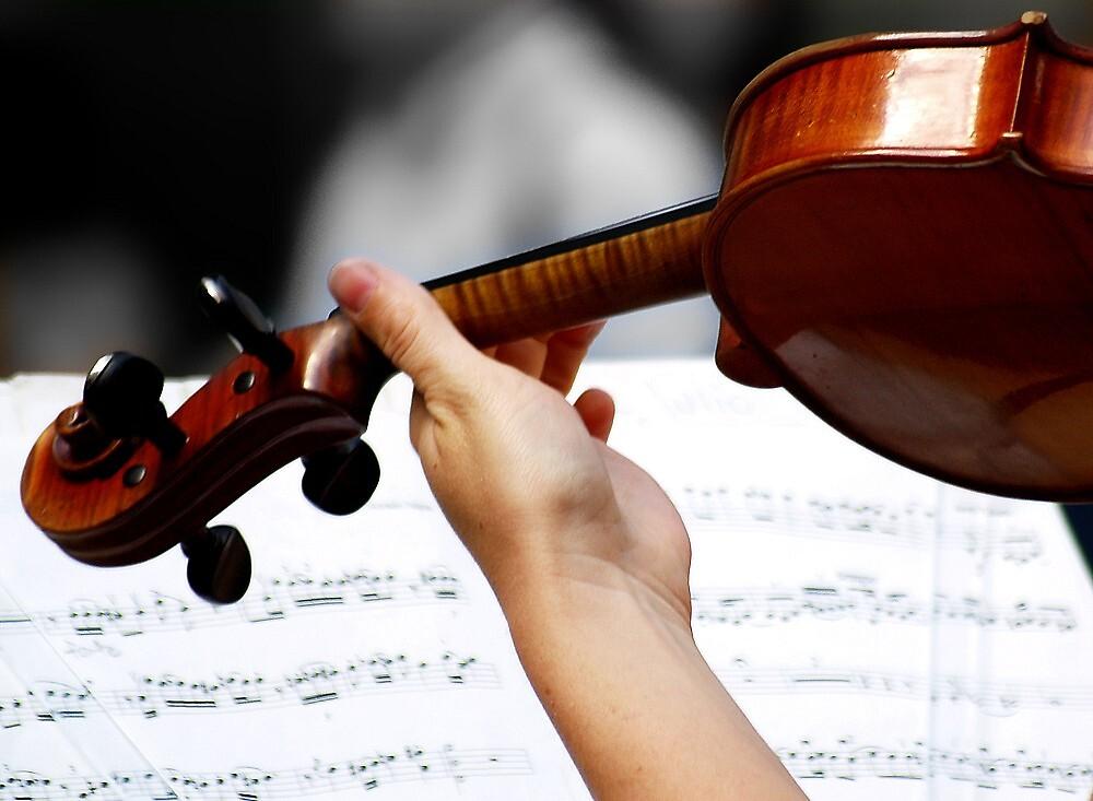 The violin by BrigitteC