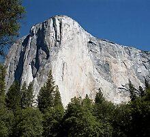 El Capatan Yosemite by Janice Crayton