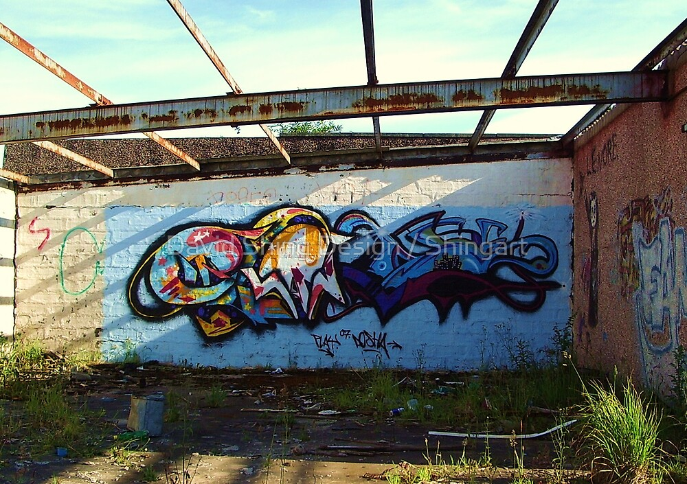 graffiti2 by David Shing Design / Shingart