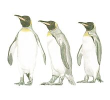 """Penguins"" Photographic Print"
