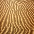 Rippled Sands by Dave Lloyd