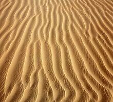 Rippled Sands by Dave Lloyd