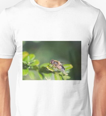 Eristalis tenax Unisex T-Shirt