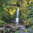 Lower Waterfall at Pistyll Rhaeadr by relayer51