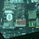 Looking Down from SkyTower in Auckland, New Zealand by cfam