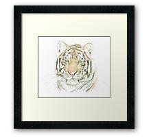 """Tiger"" Framed Print"